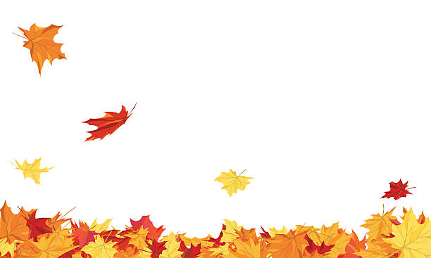 Autumn Autumn copy-space frame with maple leaves fall leaves stock illustrations