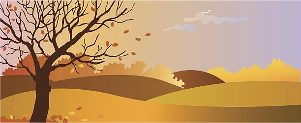 ilustrações de stock, clip art, desenhos animados e ícones de outono - alter do chão