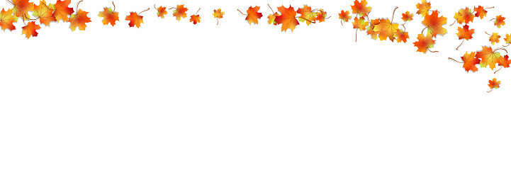Autumn vector seamless background