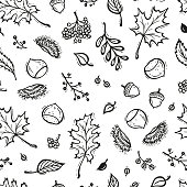 Autumn Vector Seamless Pattern. Hand Drawn Doodle Different Tree Leaves, Chestnuts, Rowan, Flowers and Berries. Black and White Background