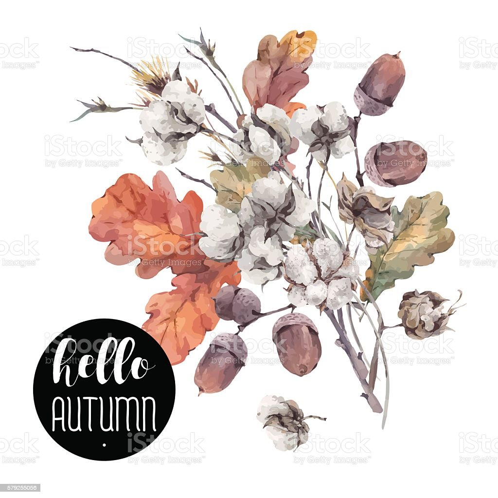 Autumn vector vintage cotton flower vector art illustration