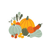 Autumn vegetables isolated on white background. Seasonal Harvest composition with natural healthy food. Colorful hand drawn illustration in cartoon style.