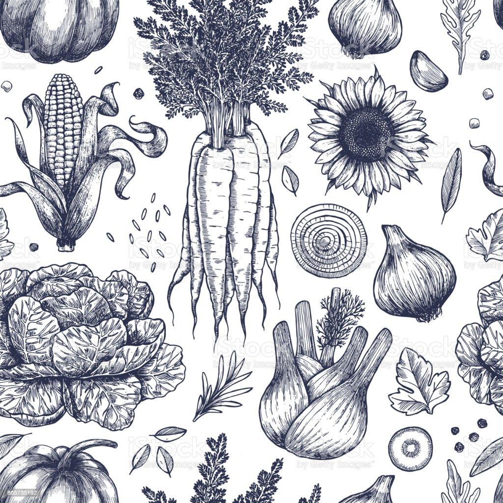 Patrón sin fisuras de otoño verduras. Handsketched verduras vintage. Ilustración de arte de línea. Ilustración de vector - ilustración de arte vectorial