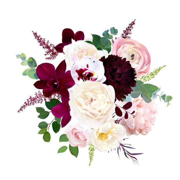 Autumn wedding bunch of flowers. Isolated and editable. Luxury fall flowers vector bouquet. Dark orchid, garden rose, burgundy red dahlia, ranunculus, astilbe, agonis, seeded eucalyptus and greenery. Autumn wedding bunch of flowers. Isolated and editable. bunch stock illustrations