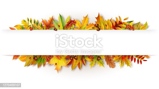 istock Autumn white banner decorated with fallen leaves 1270455107