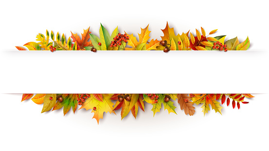 Autumn white banner decorated with fallen leaves