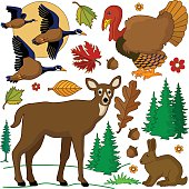 autumn wild animals in the forest design elements