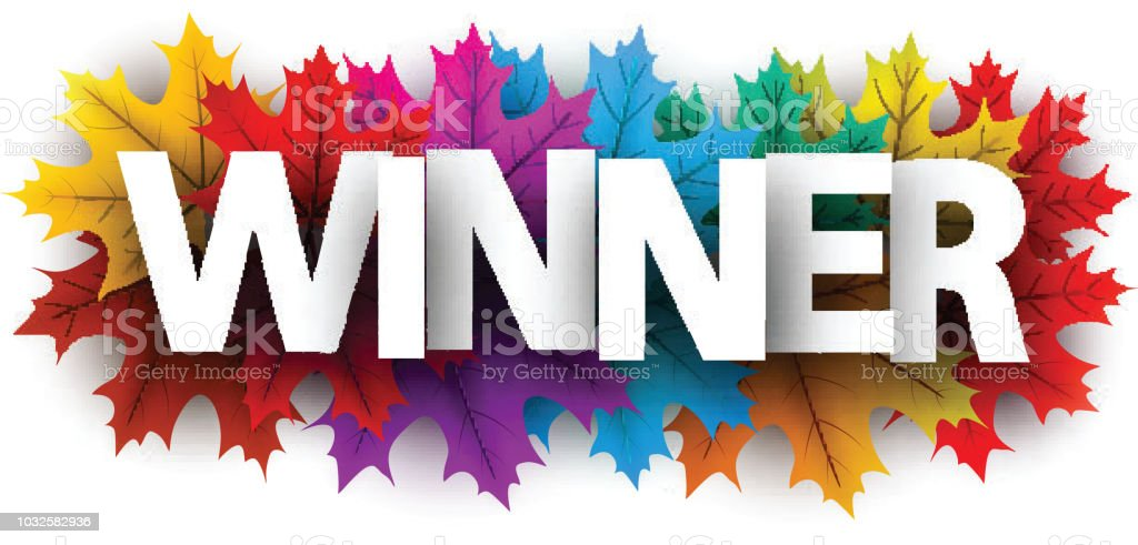 autumn winner banner with colorful maple leaves stock vector art