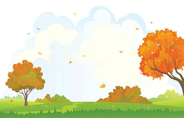 310,830 backgrounds clipart illustrations & clip art - istock  istock