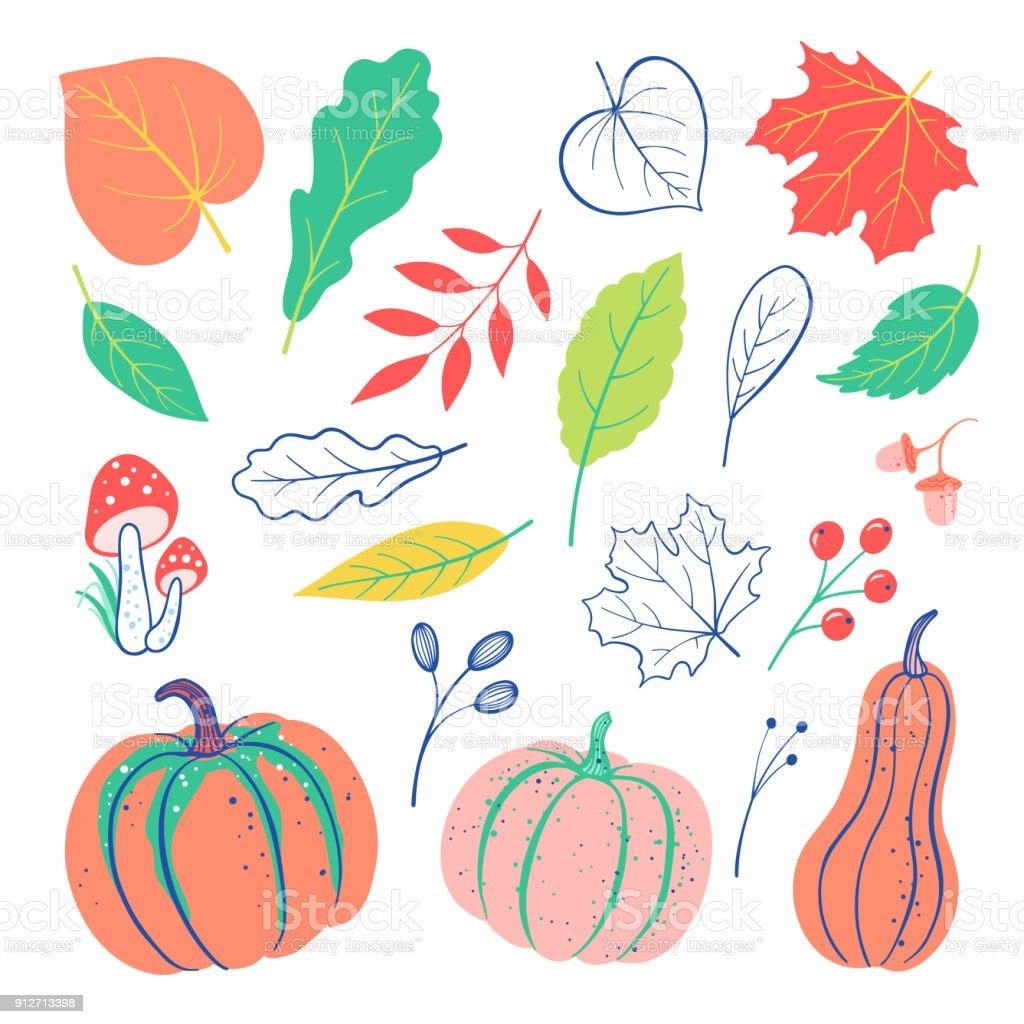 Autumnal doodles elements set with pumpkin, leaves, berries, acorn, mushroom. Vector harvest falling background vector art illustration