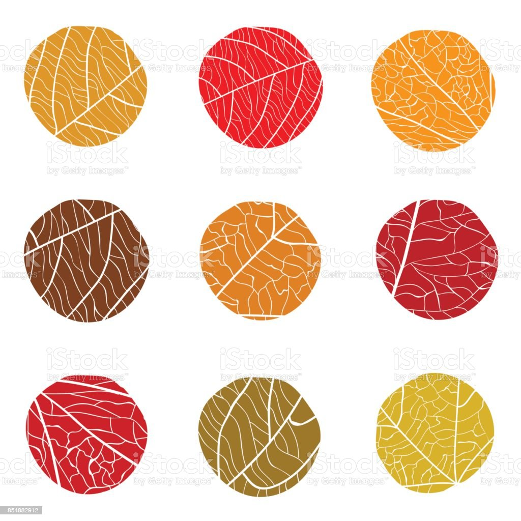 Autumnal vector pattern. Curve circles with white veins inside. vector art illustration