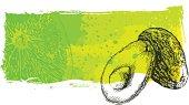 Avacado grunge banner, very high detail - vector illustrtation