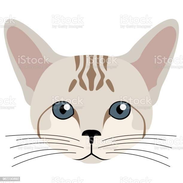 Avatar of a cat cat breeds vector id962230892?b=1&k=6&m=962230892&s=612x612&h=wga8ksi5m3enobaj6jqocc5ltfmlvfakitabse xnuq=