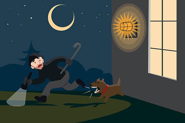 Averted burglary at night – Vektorgrafik