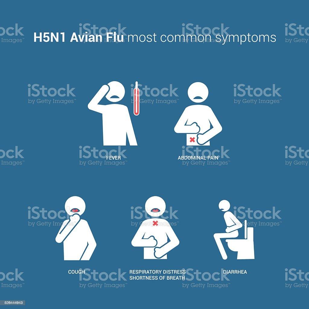 H5N1 Avian flu symptoms vector art illustration