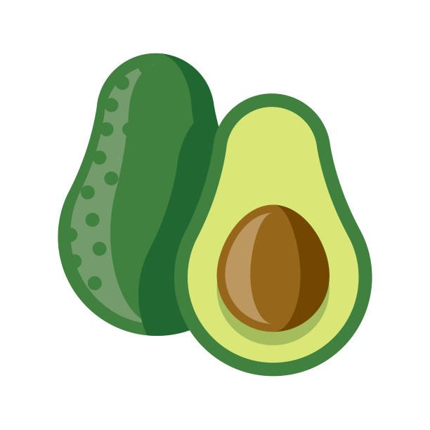 Avocado Flat Design Fruit Icon A flat design styled fruit icon with a long side shadow. Color swatches are global so it's easy to edit and change the colors. File is built in the CMYK color space for optimal printing. avocado clipart stock illustrations
