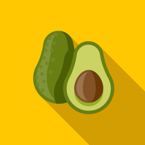 Avocado Flat Design Mexico Icon with Side Shadow A pastel colored flat design Mexico and Cinco de Mayo icon with a long side shadow. Color swatches are global so it's easy to edit and change the colors. avocado stock illustrations