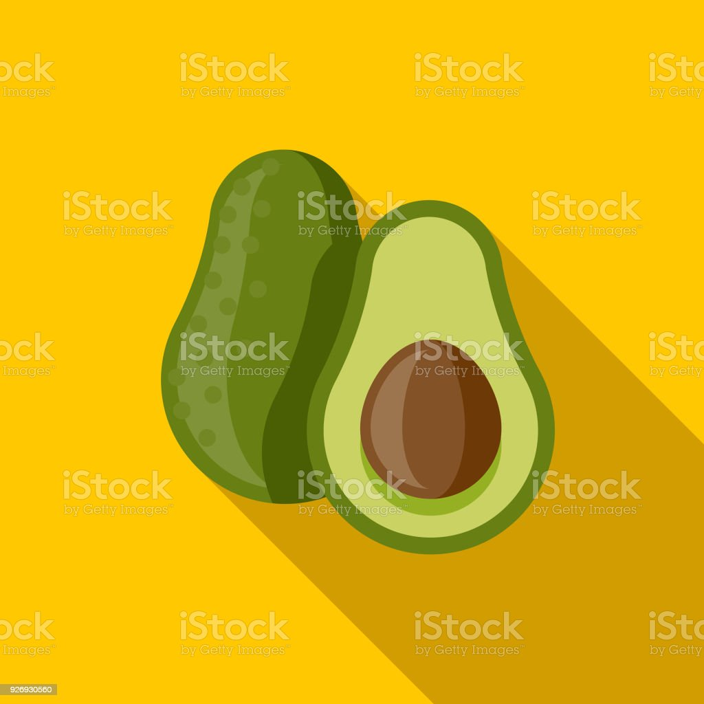 Avocado Flat Design Mexico Icon with Side Shadow vector art illustration