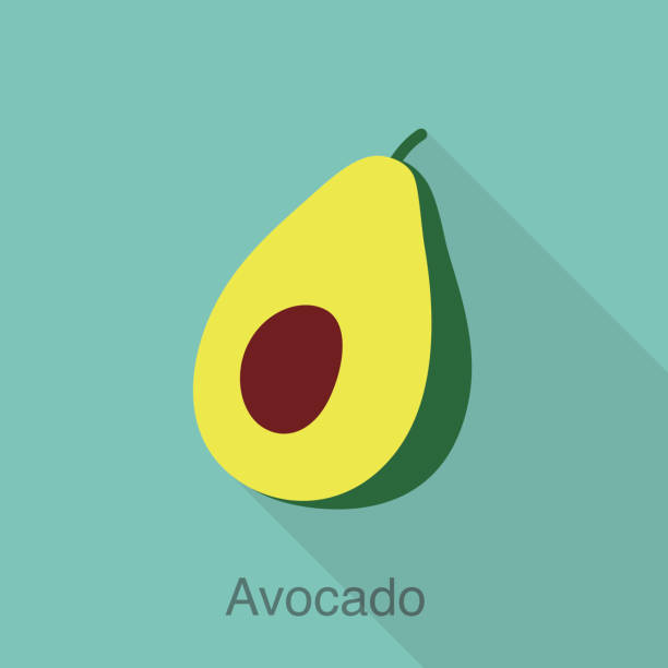 illustrazioni stock, clip art, cartoni animati e icone di tendenza di avocado fruit flat icon series, vector illustration - avocado