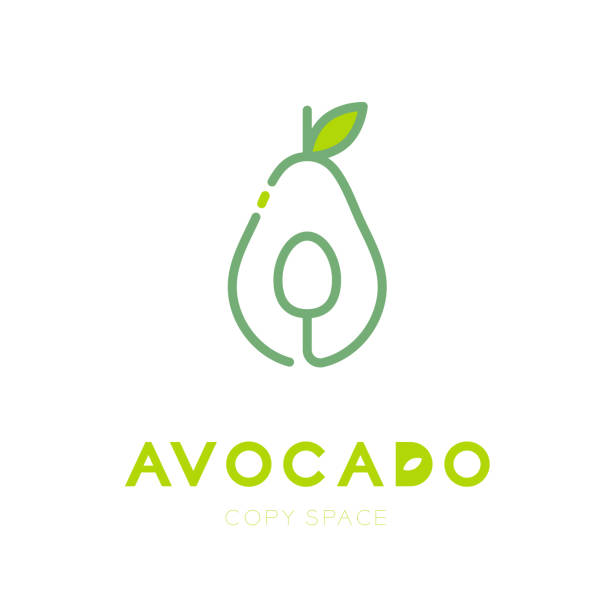 Avocado fruit with spoon symbol icon outline stroke set design illustration isolated on white background with Avocado text and copy space, vector eps10 vector art illustration