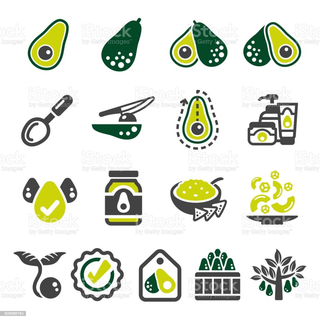 avocado icon vector art illustration