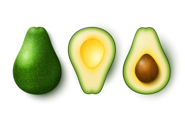 illustrazioni stock, clip art, cartoni animati e icone di tendenza di avocado isolated - avocado