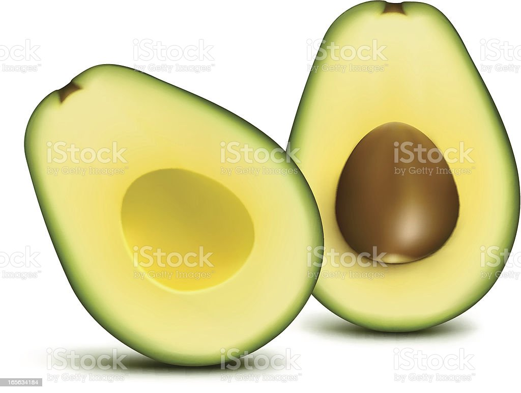 Avocado sliced vector art illustration