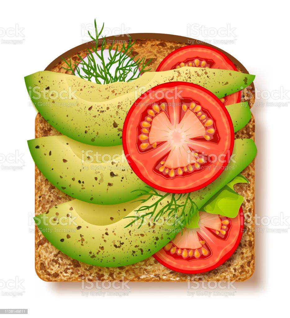 Avocado toast with fresh slices of ripe avocado, seasoning and dill, tomato and radish. Delicious avocado sandwich. Vector illustration vector art illustration