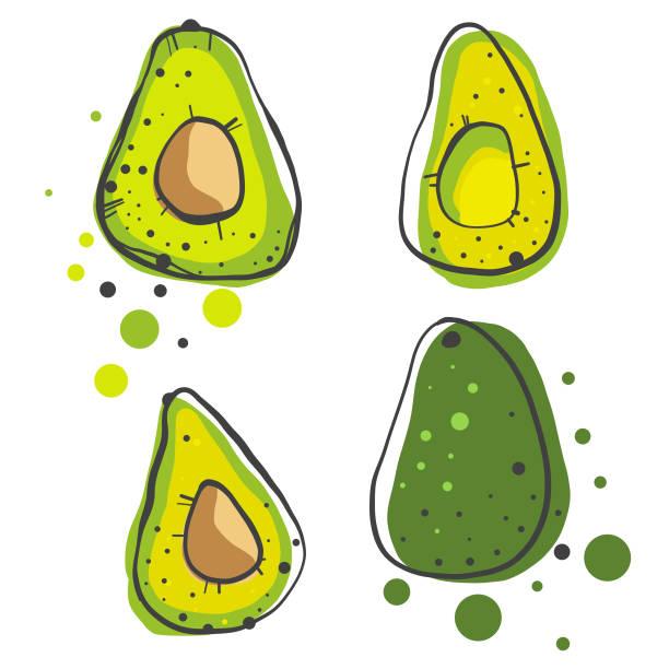 avocados bleistiftzeichnungen - südeuropa stock-grafiken, -clipart, -cartoons und -symbole