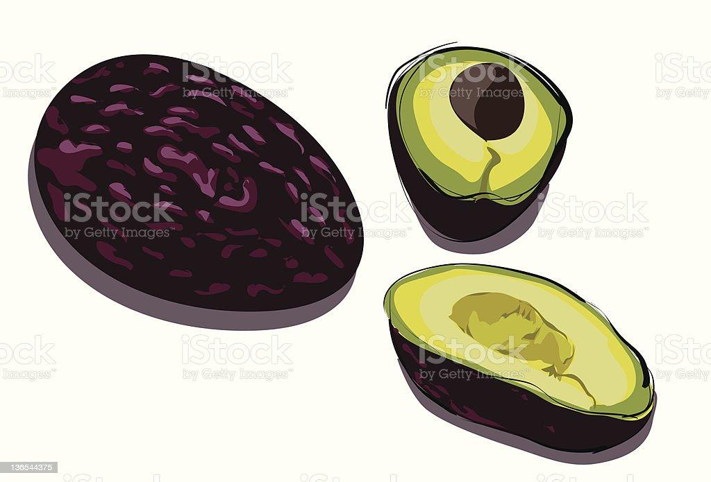 Avocados royalty-free stock vector art