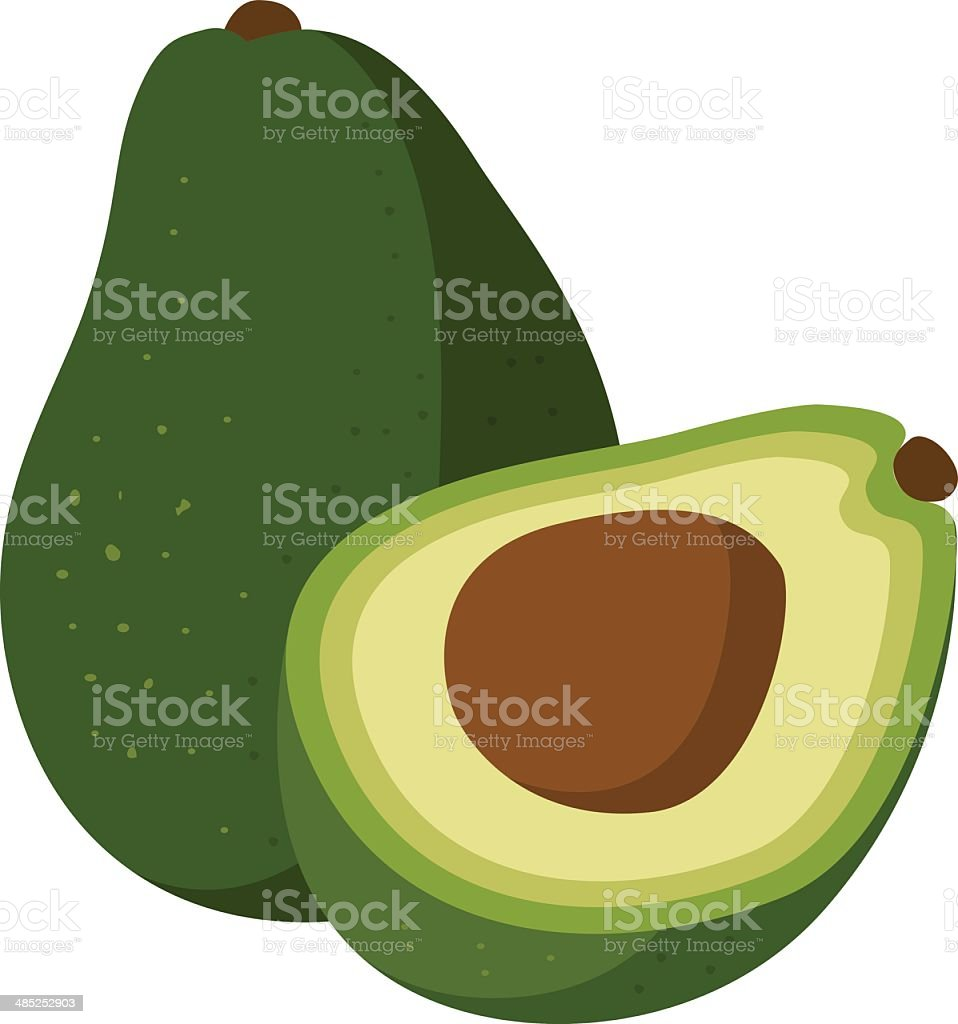 avocados vector art illustration