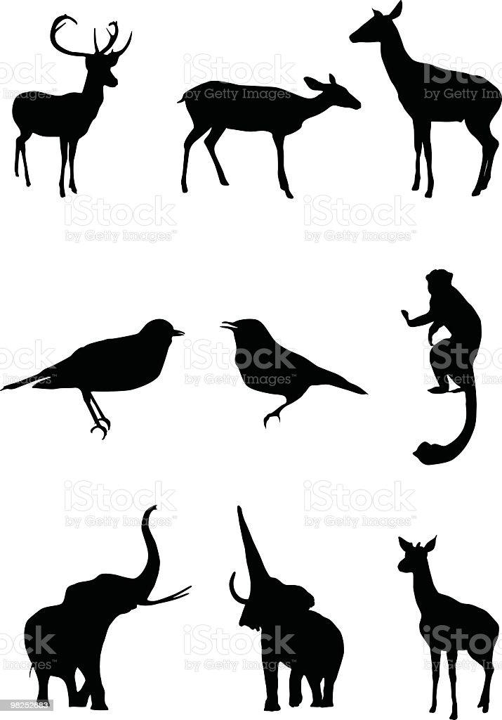 Fantastico animali da utilizzare per il progetto fantastico animali da utilizzare per il progetto - immagini vettoriali stock e altre immagini di animale royalty-free