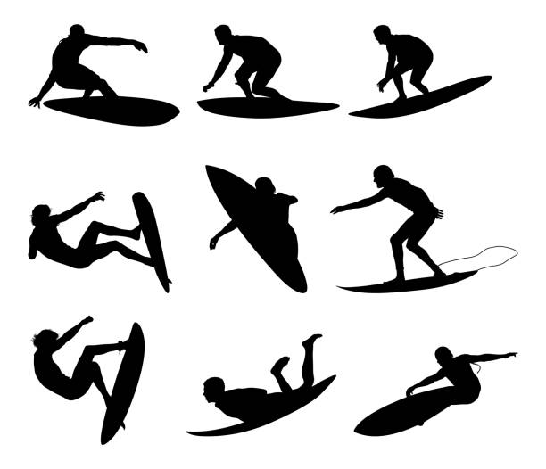 Awesome male surfers surfing vector art illustration