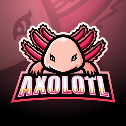 Axolotl mascot esport emblem design