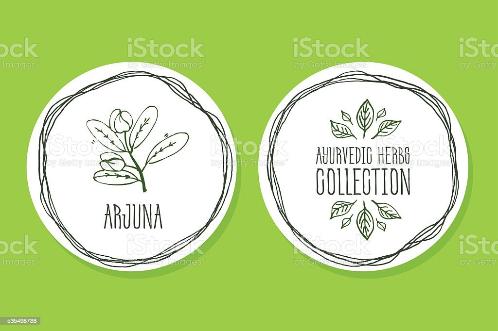 Ayurvedic Herb - Product Label with Arjuna vector art illustration