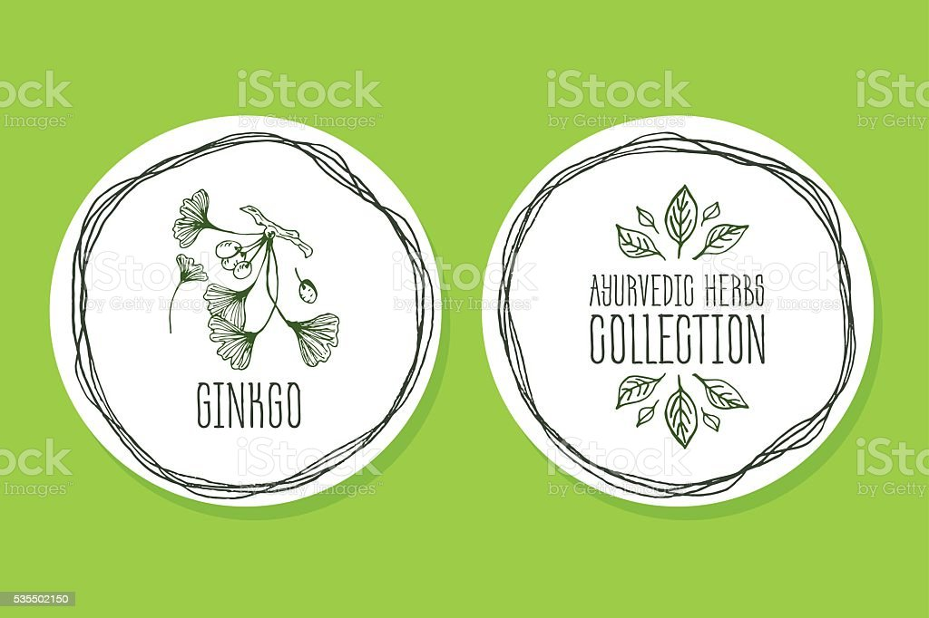 Ayurvedic Herb - Product Label with ginkgo vector art illustration