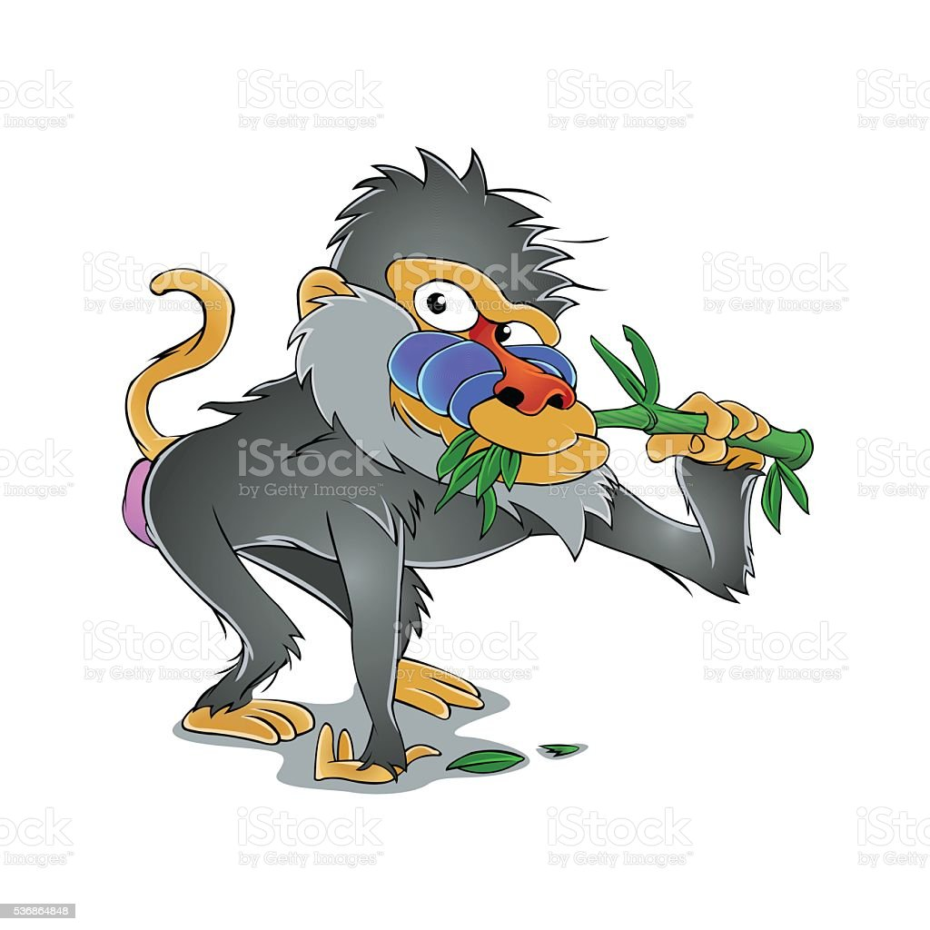Baboon Eating Bamboo Stock Illustration Download Image Now Istock Download baboon cartoon stock photos. https www istockphoto com vector baboon eating bamboo gm536864848 95080419