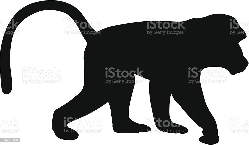 royalty free silhouette of black baboon clip art vector images rh istockphoto com cute baboon clipart baboon clip art for kids