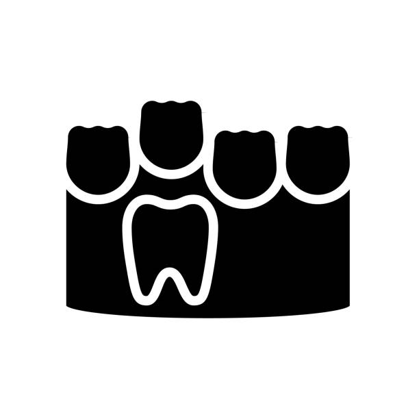 baby and molar teeth glyph icon vector illustration baby and molar teeth glyph icon vector. baby and molar teeth sign. isolated contour symbol black illustration streptococcus mutans stock illustrations