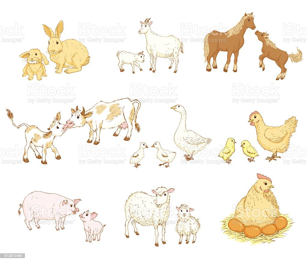 Baby and mother animals vector art illustration