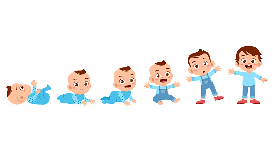 baby boy to toddler life cycle vector