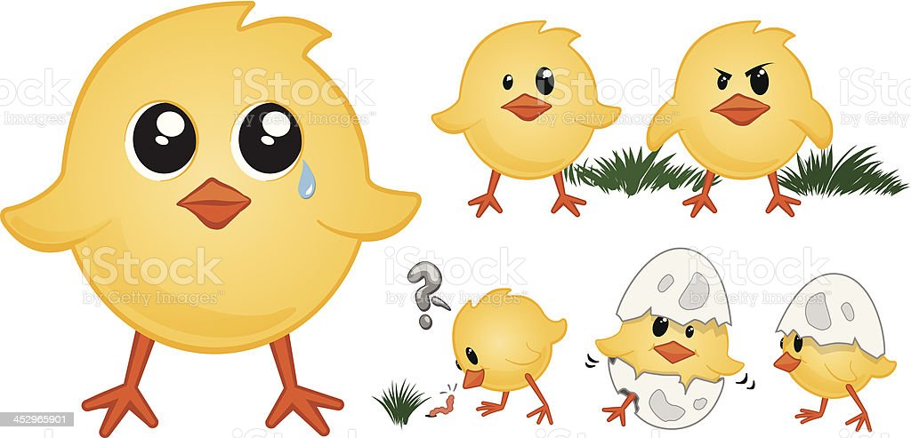 Baby Chicks royalty-free stock vector art