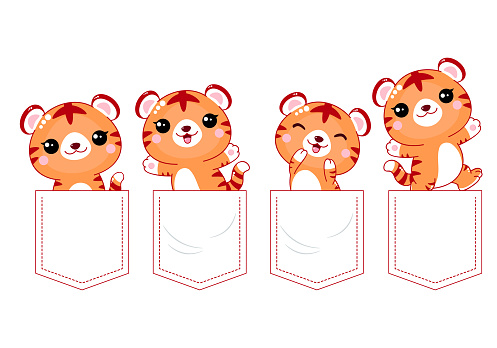 Baby collection of kawaii tigers in pockets