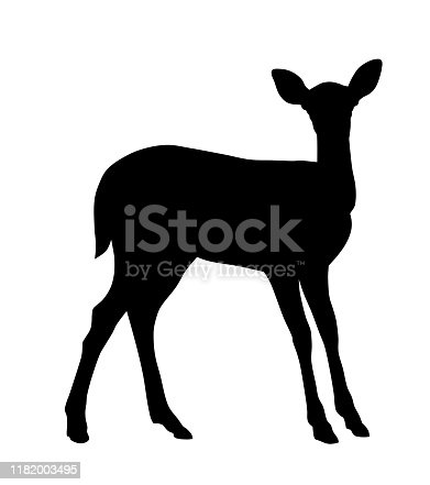 Vector illustration of baby deer silhouette