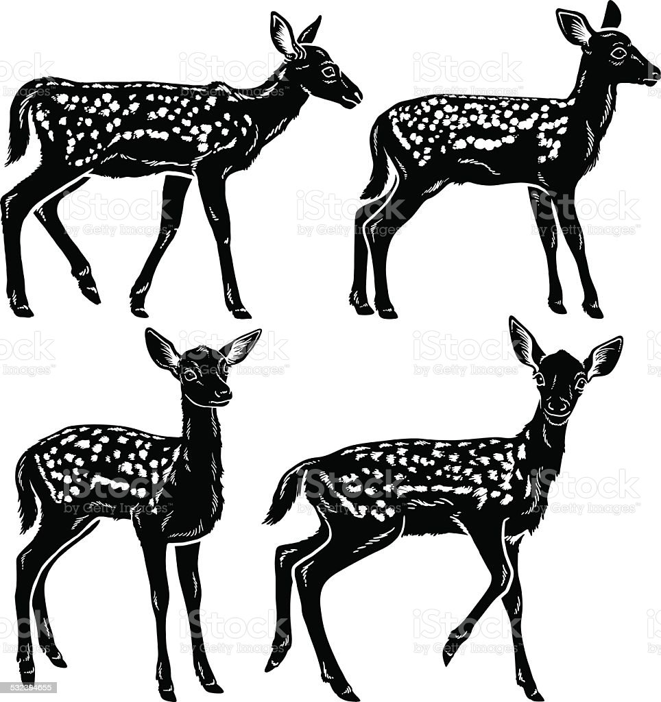 Bébé deer - Illustration vectorielle