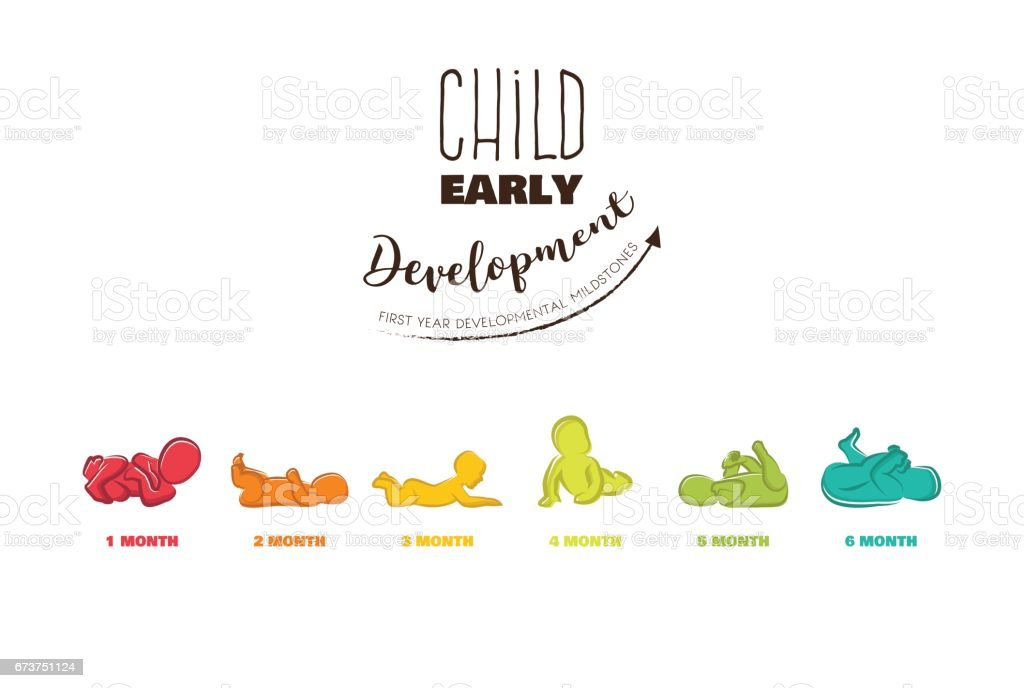 Baby Development Stages Milestones First One Year . Child milestones of first year vector art illustration