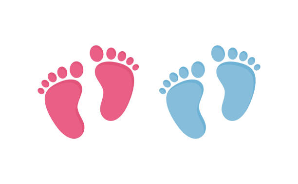 ilustrações de stock, clip art, desenhos animados e ícones de baby footsteps vector illustration set - pairs of pink and blue footprints in flat style. - baby