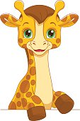 Portrait of a cute baby giraffe for the frame