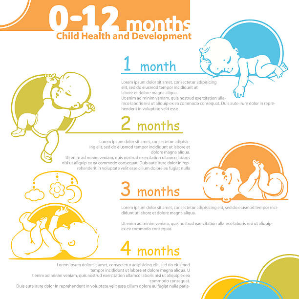 Baby growing up infographic. vector art illustration