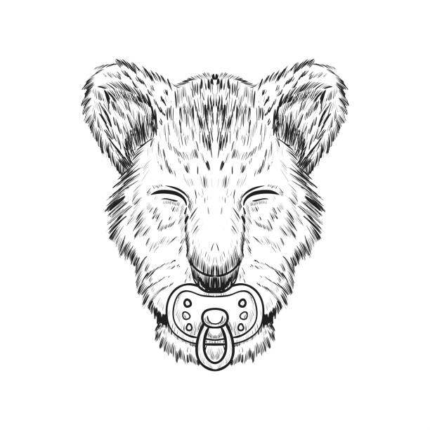 134 Drawing Of The Lion Face Outline Illustrations Royalty Free Vector Graphics Clip Art Istock Print the standing lion and color him in! 134 drawing of the lion face outline illustrations royalty free vector graphics clip art istock